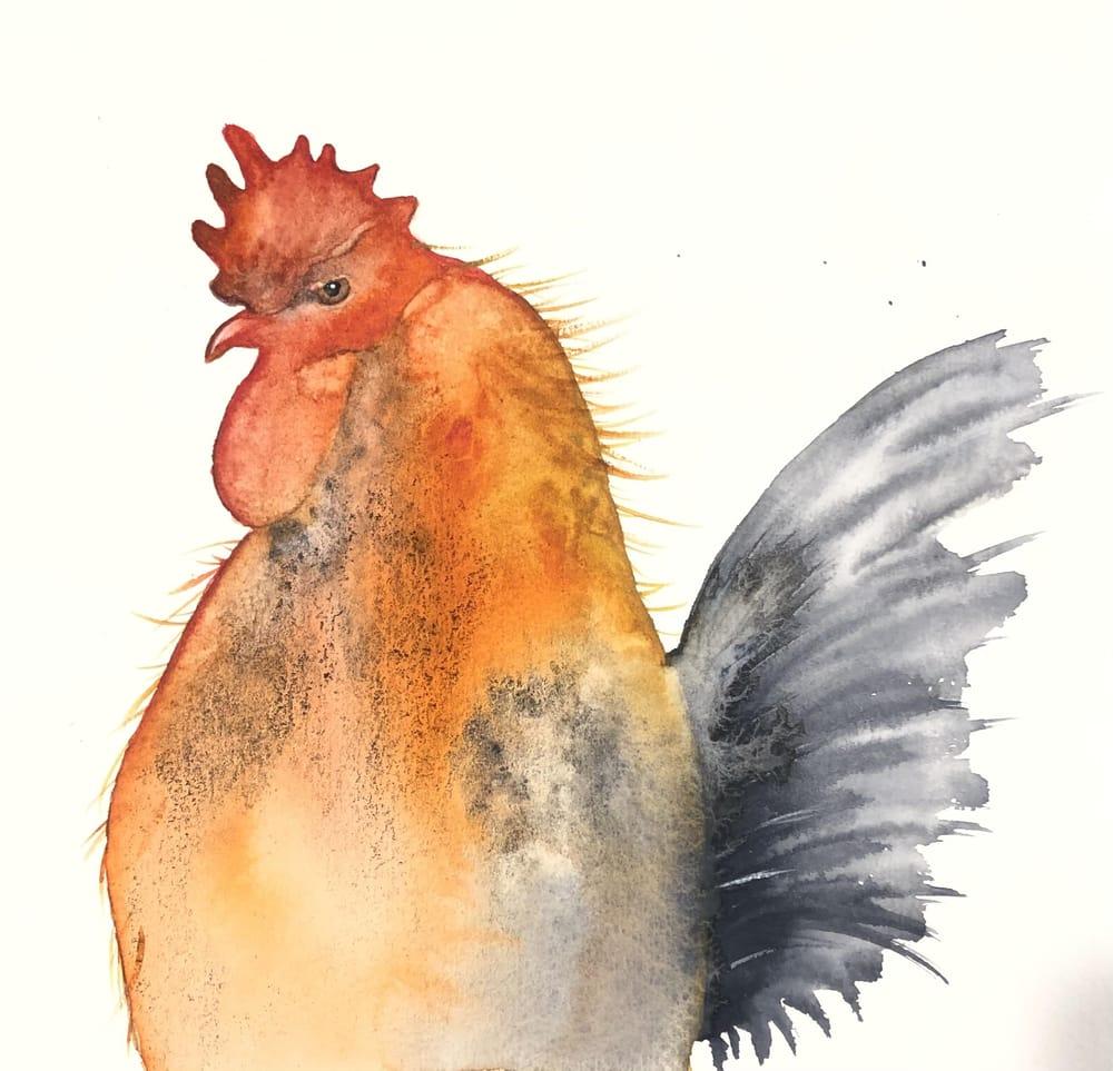Aurelie's cockerel - image 1 - student project