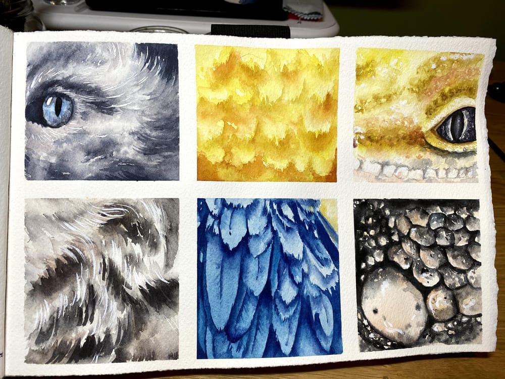 Texture Studies - image 2 - student project