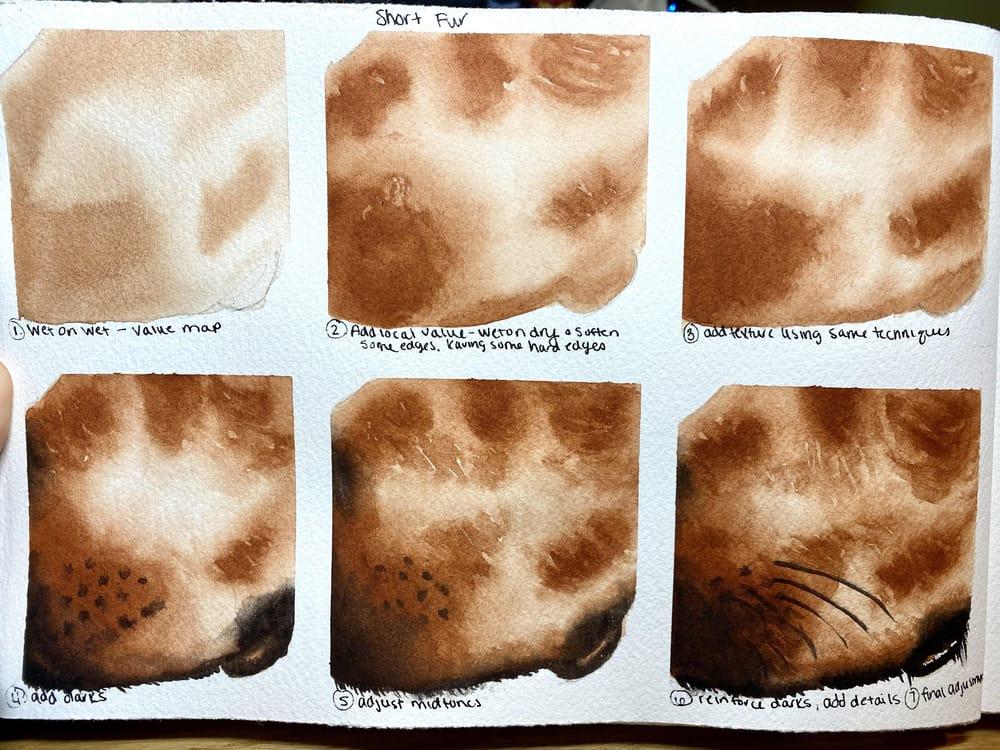 Texture Studies - image 1 - student project