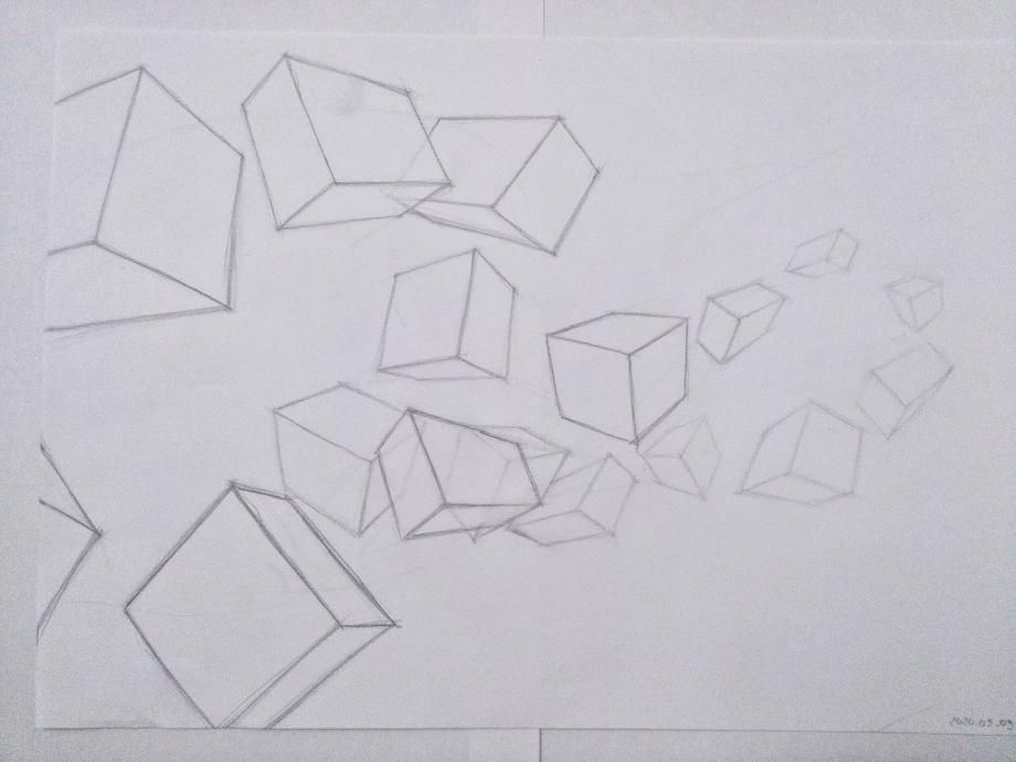 Organic Forms and Boxes - image 8 - student project