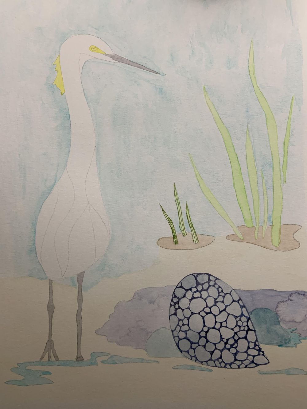 Snowy Egret - image 3 - student project