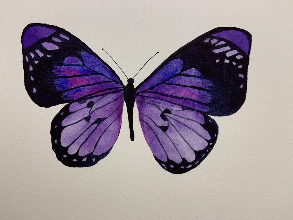 Blue and Purple Butterflies - image 1 - student project