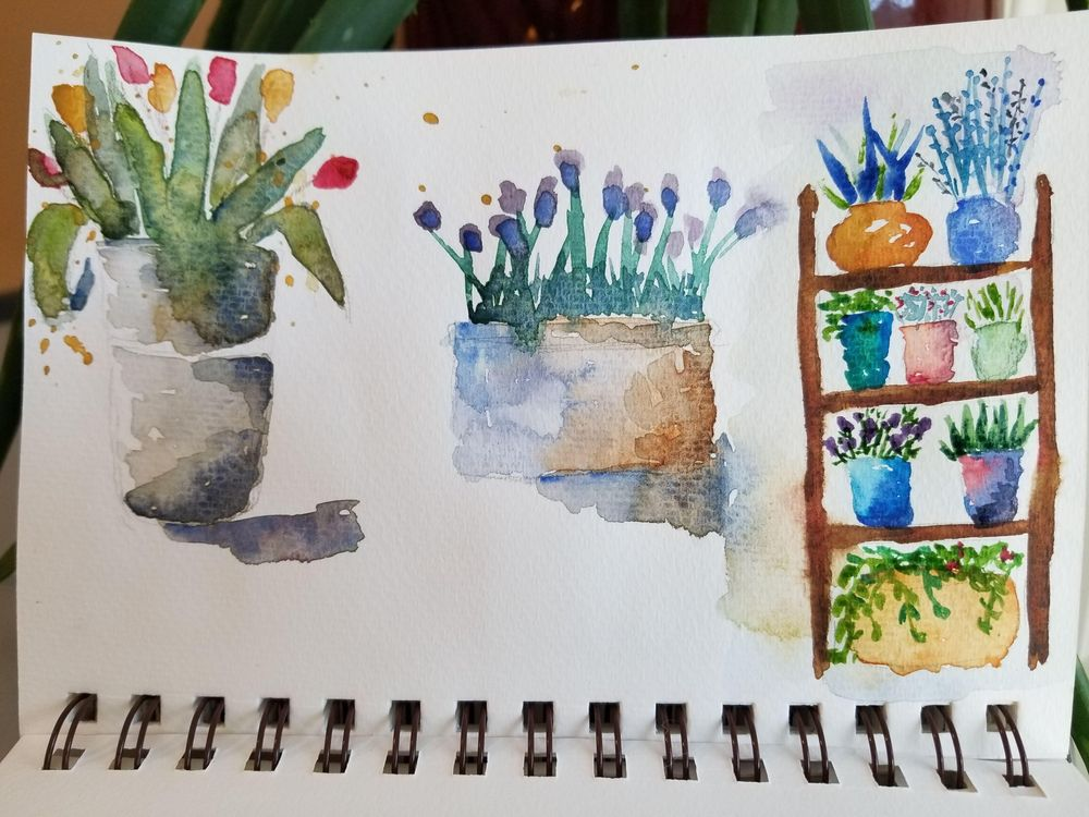 Flower & Window Warm-ups - image 1 - student project