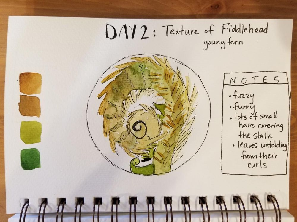 Nature Journaling Dream! - image 2 - student project