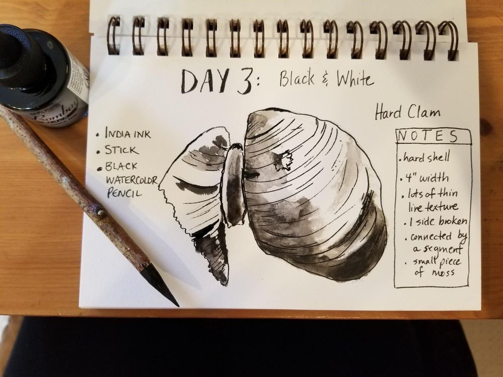 Nature Journaling Dream! - image 3 - student project