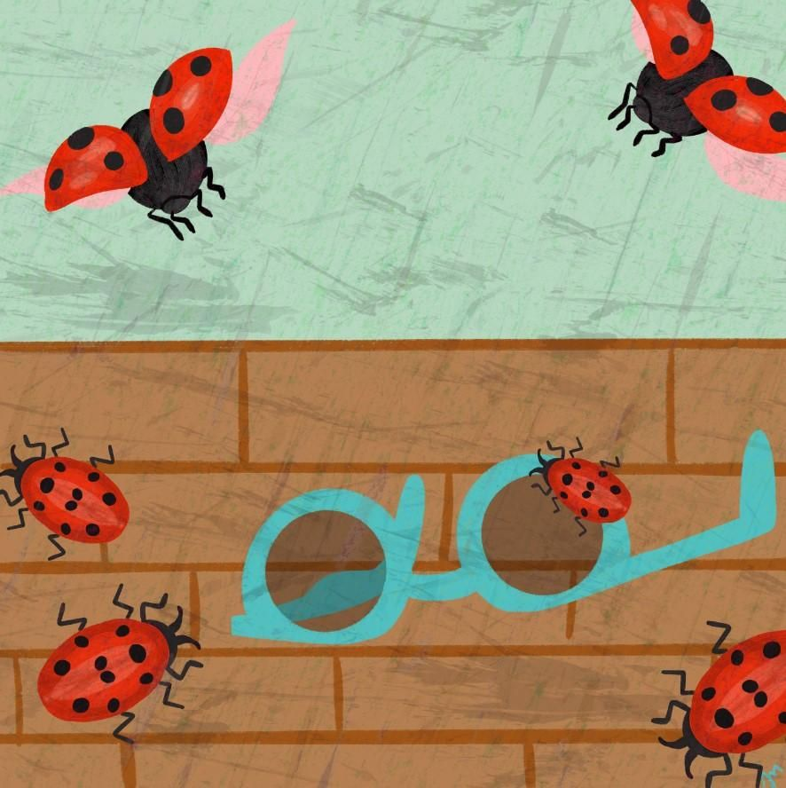 Butterflies & Ladybugs - image 3 - student project