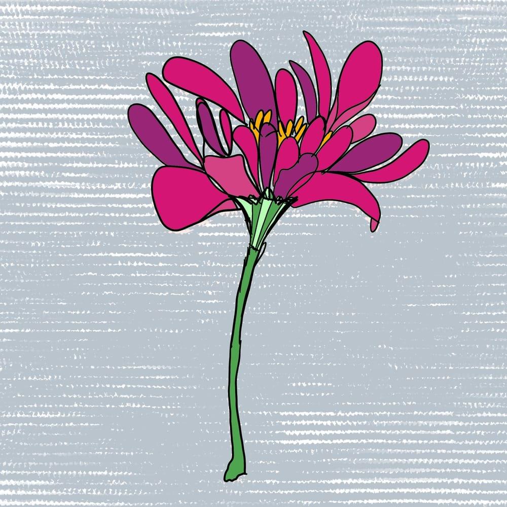 Botanicals - image 2 - student project