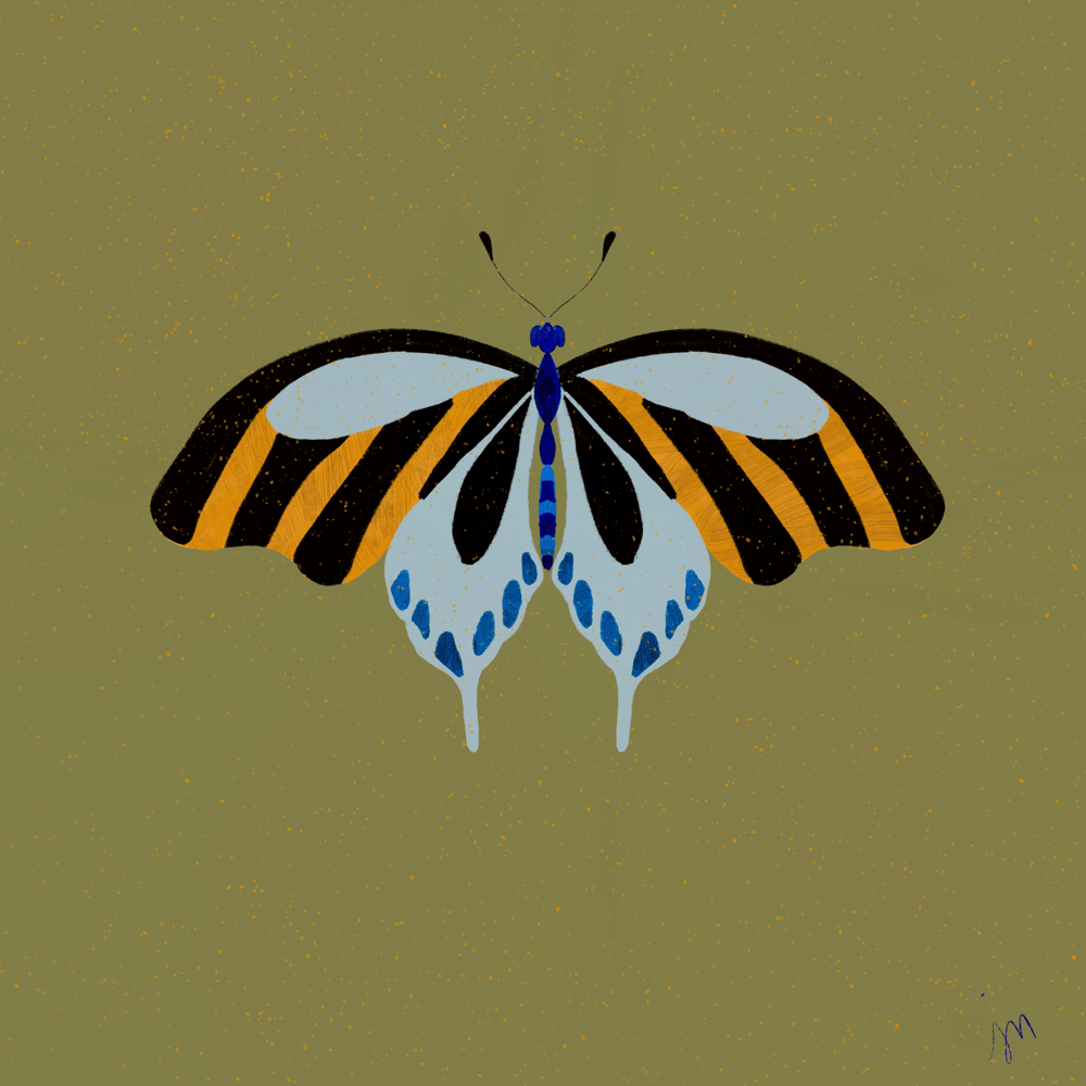 Butterflies & Ladybugs - image 1 - student project