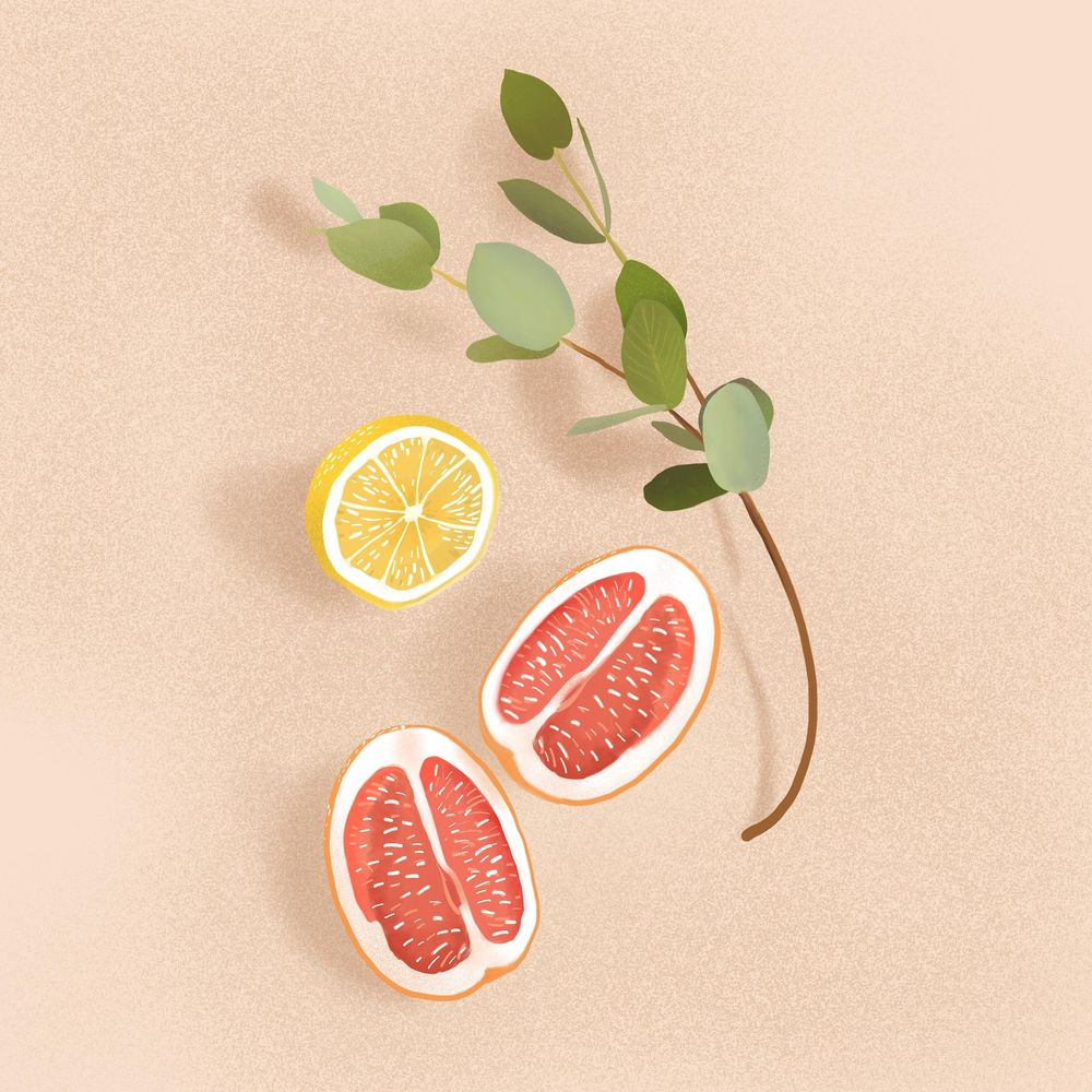 Citrussy - image 1 - student project