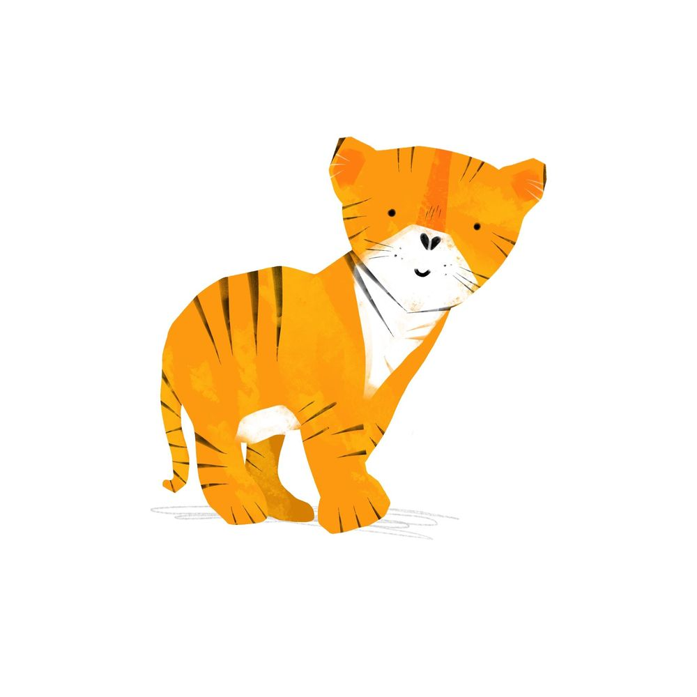 Animal Illustrations - image 1 - student project