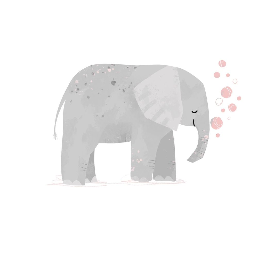 Animal Illustrations - image 2 - student project