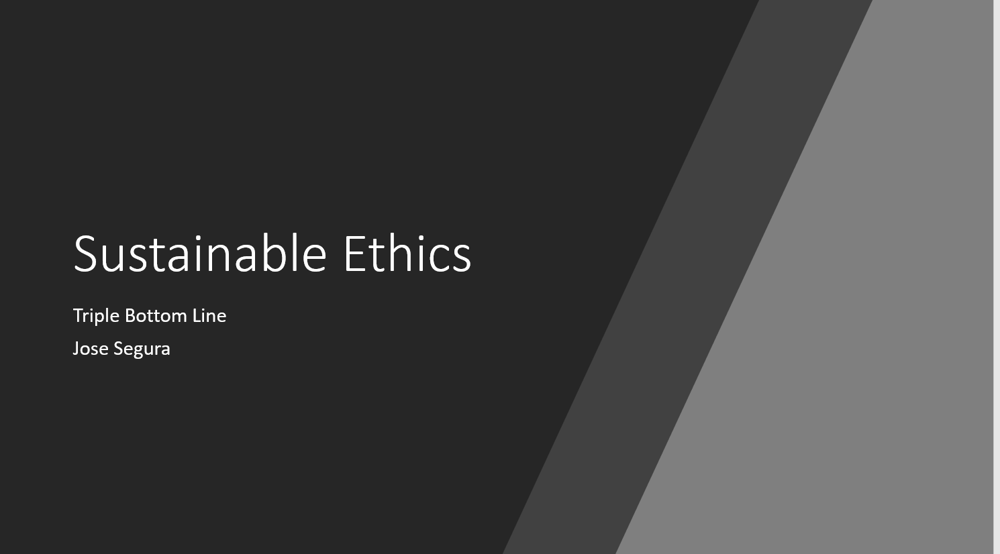 Sustainable Ethics - image 1 - student project