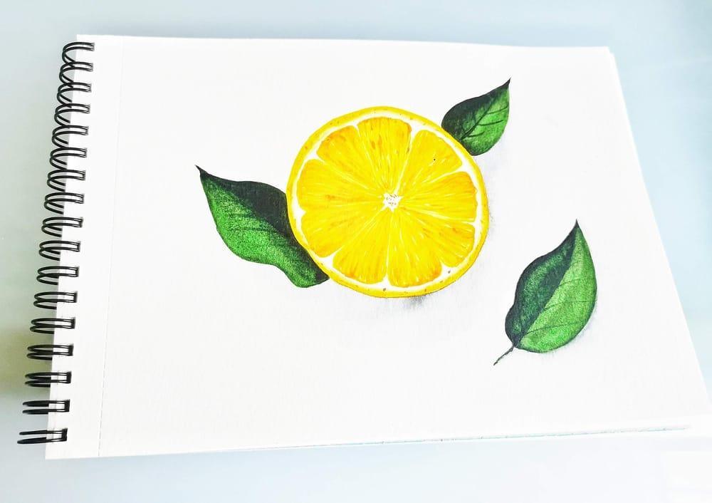 Citrus Fruits - image 2 - student project