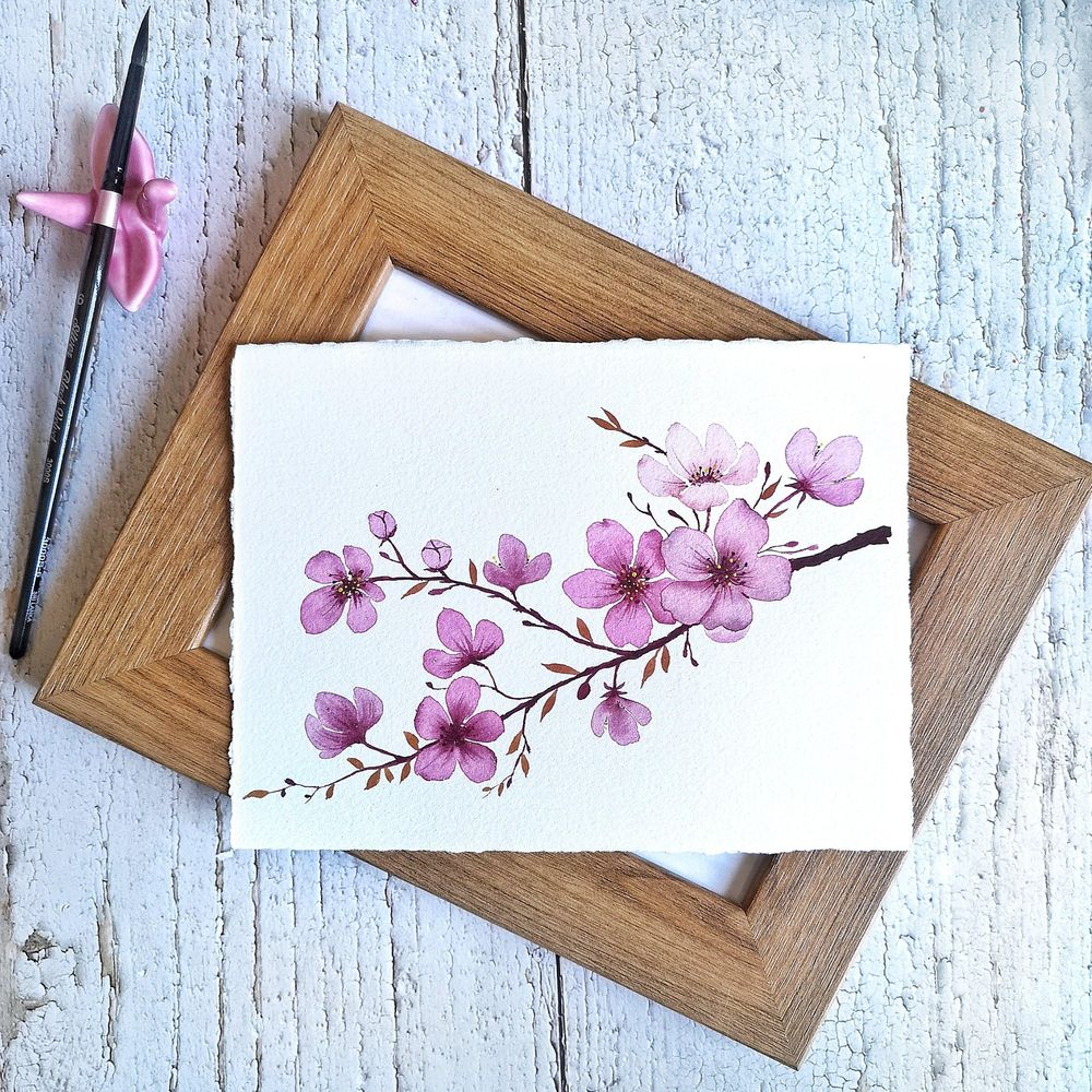 Cherry Blossoms - image 1 - student project