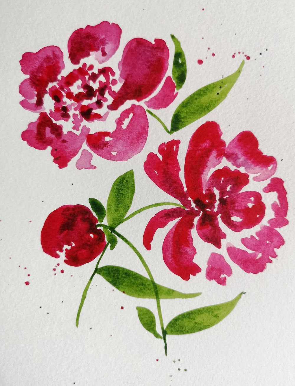 Peonies - image 2 - student project