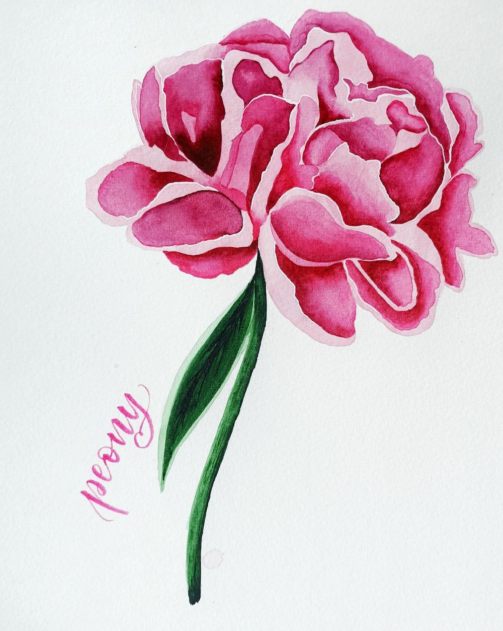 Peonies - image 3 - student project
