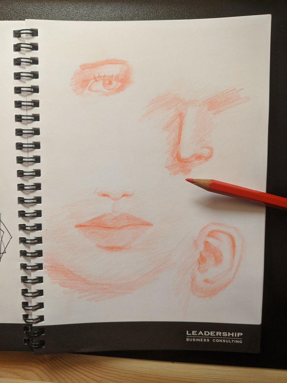 Pencil Portrait Sketch - image 1 - student project