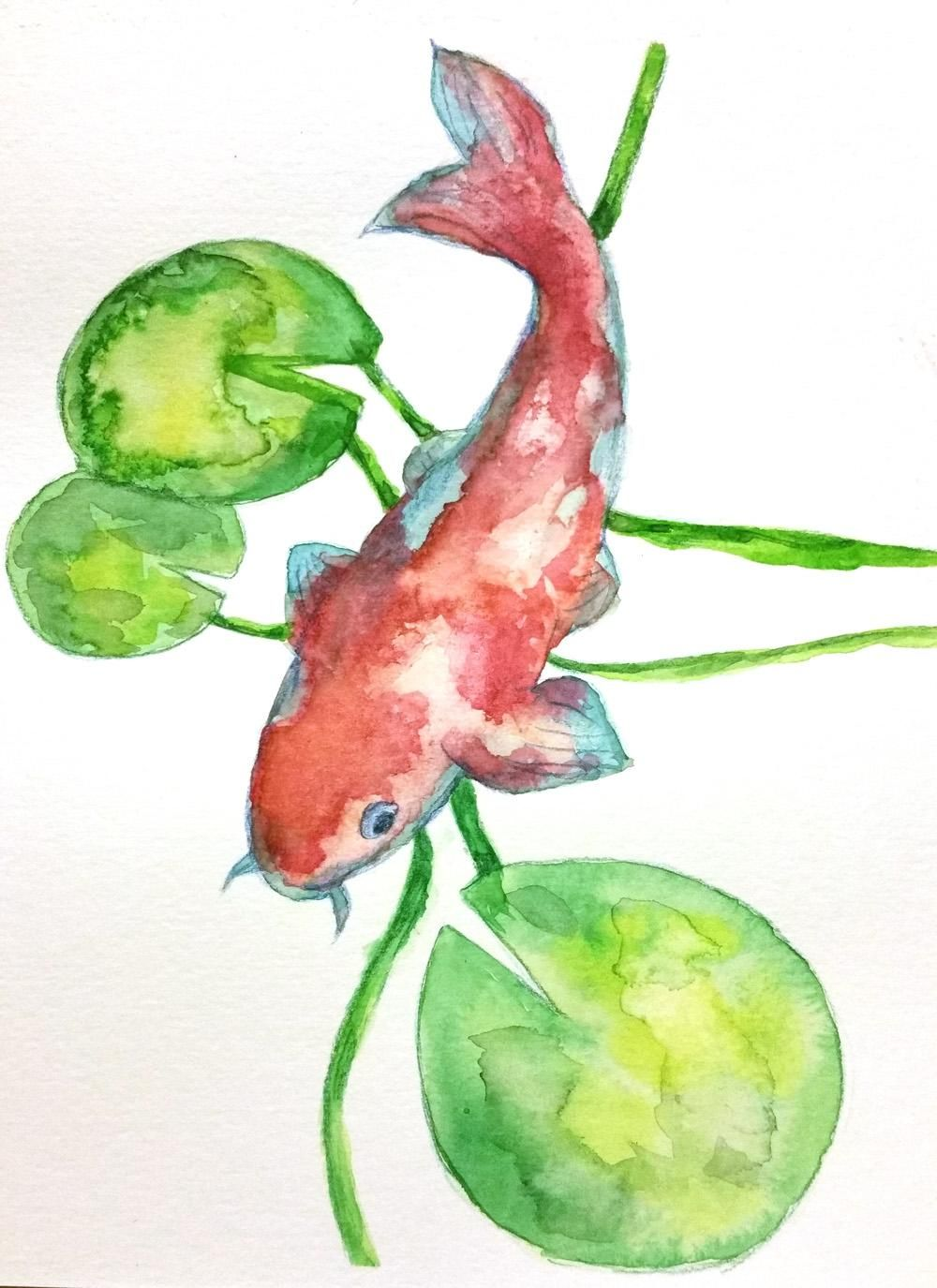 Watercolor to Procreate Koi Fish - image 2 - student project