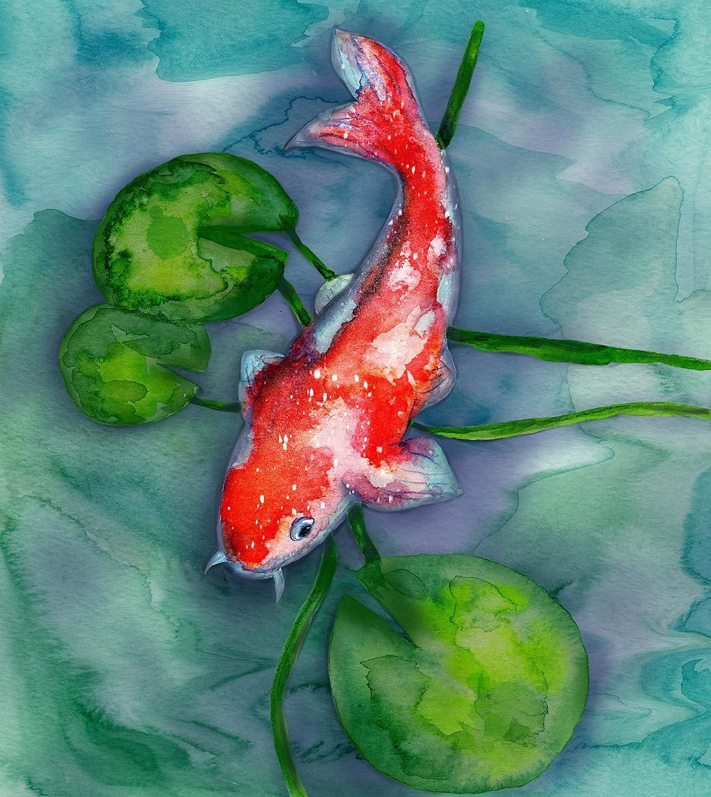 Watercolor to Procreate Koi Fish - image 1 - student project