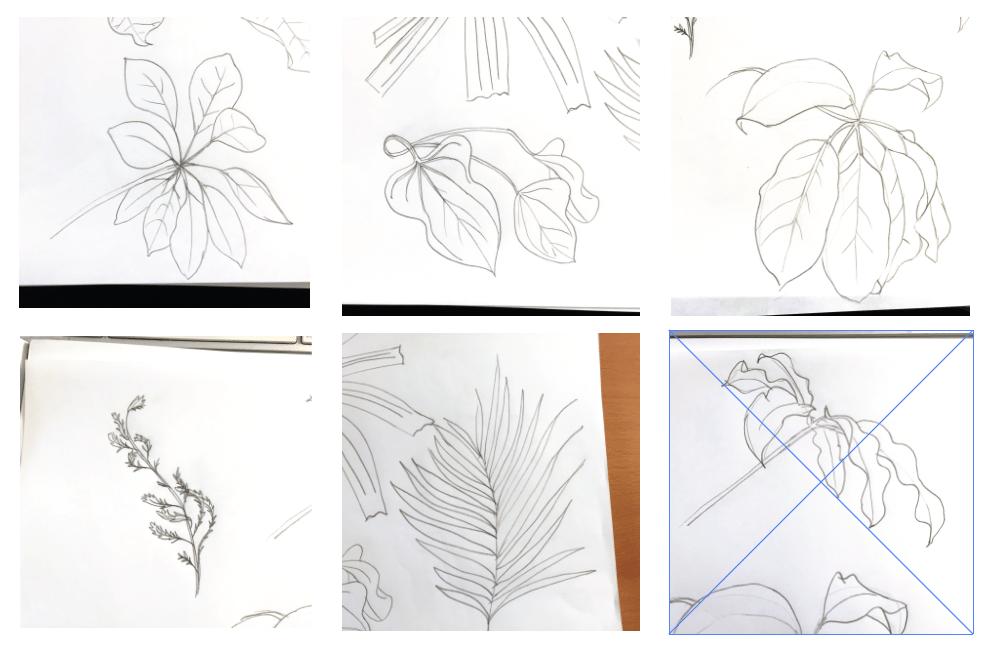 Make like a Leaf - image 7 - student project
