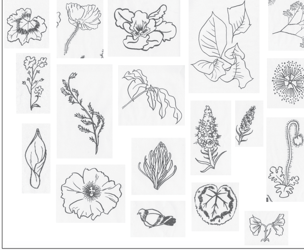 Make like a Leaf - image 5 - student project