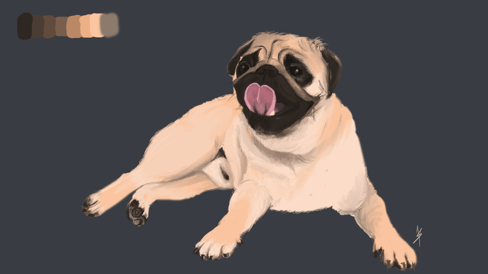 The Pug - image 1 - student project