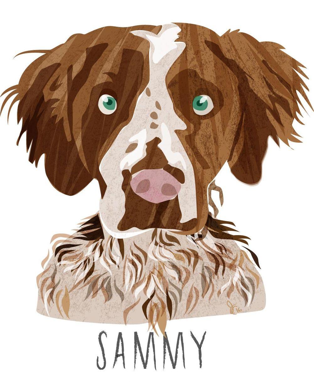 Sammy - image 1 - student project