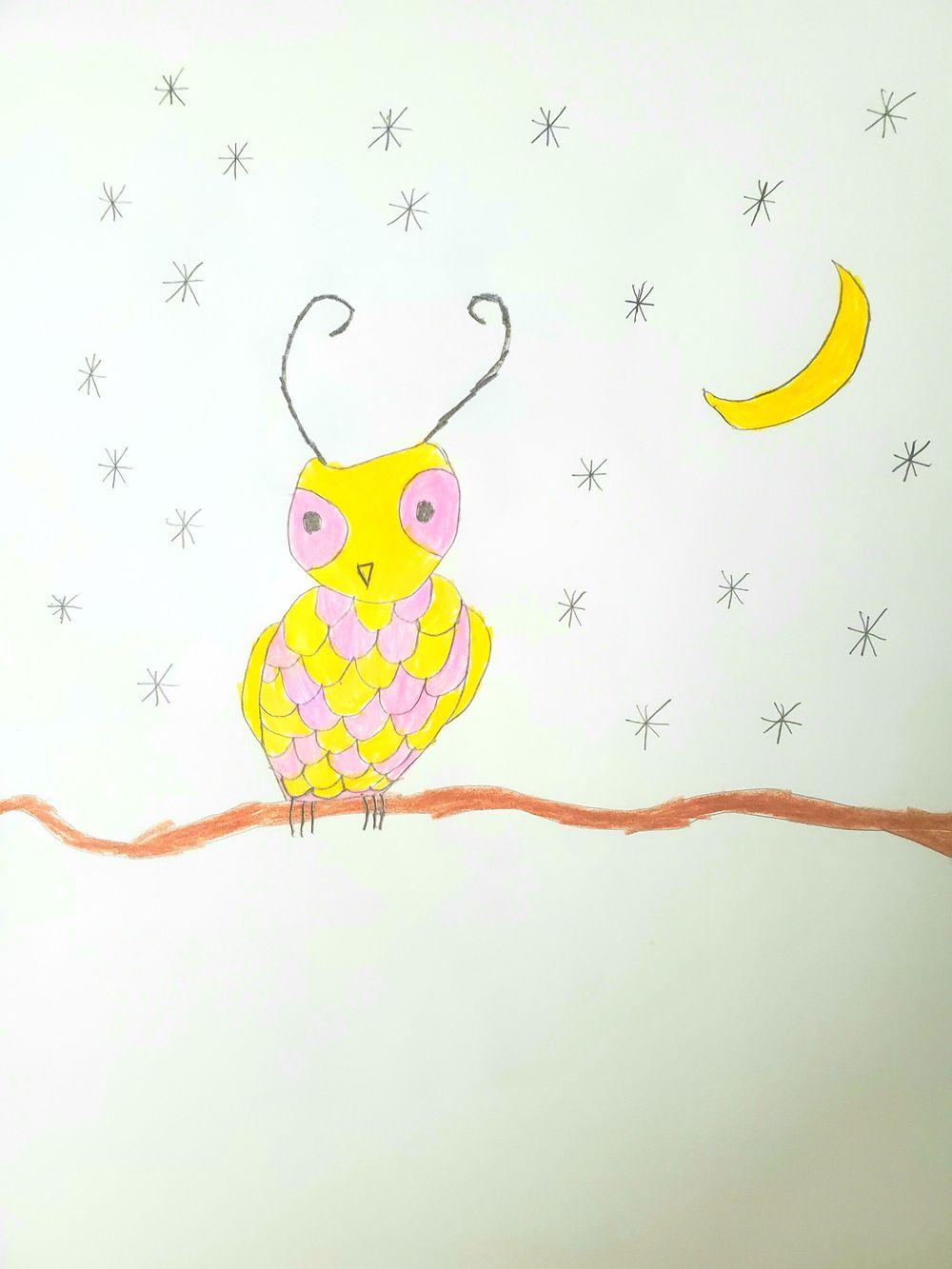 Desert Owl by Jordan - image 1 - student project