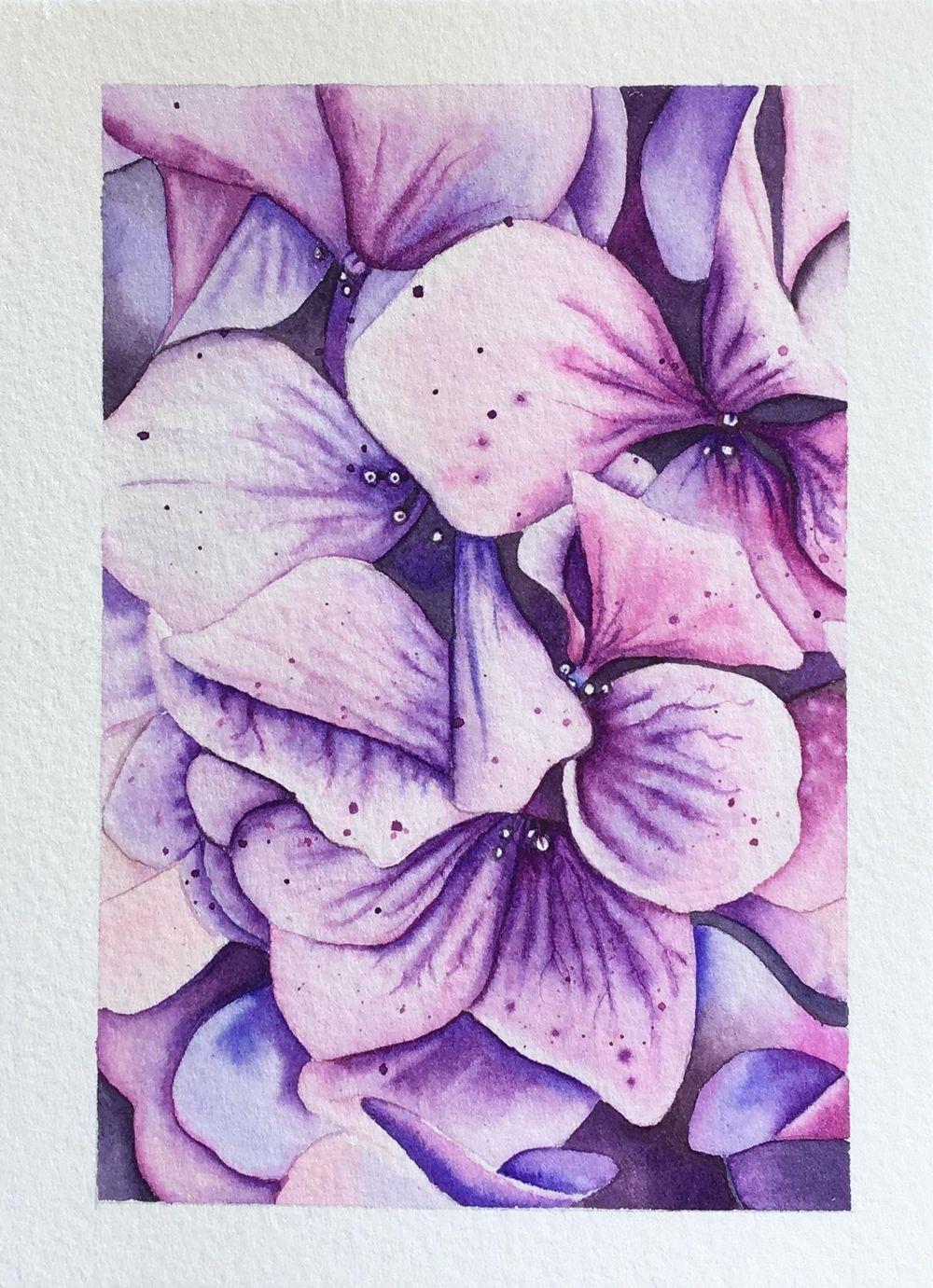 My Hydrangea - image 3 - student project