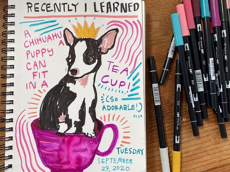 Illustrated Journaling: Day 1 - image 1 - student project