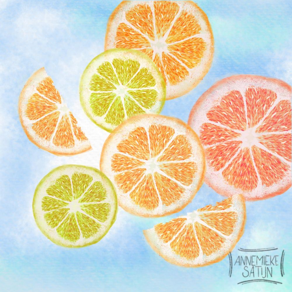Watercolor citrus slices - image 1 - student project