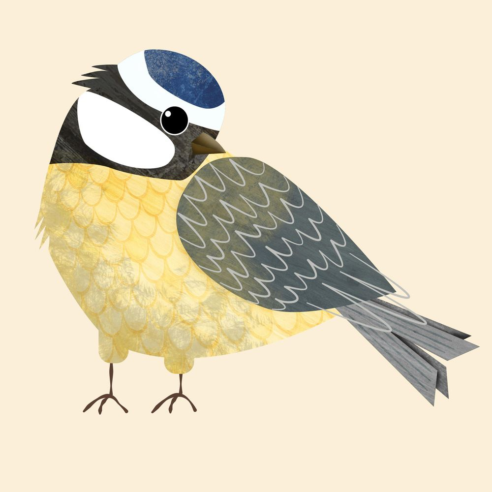 Create birds and bird houses in Affinity Designer for iPad - image 4 - student project