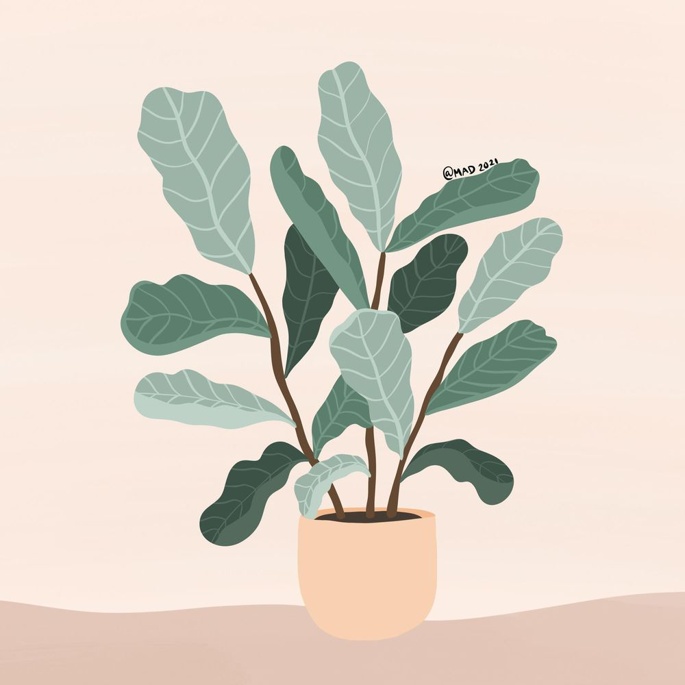 My plant - image 1 - student project