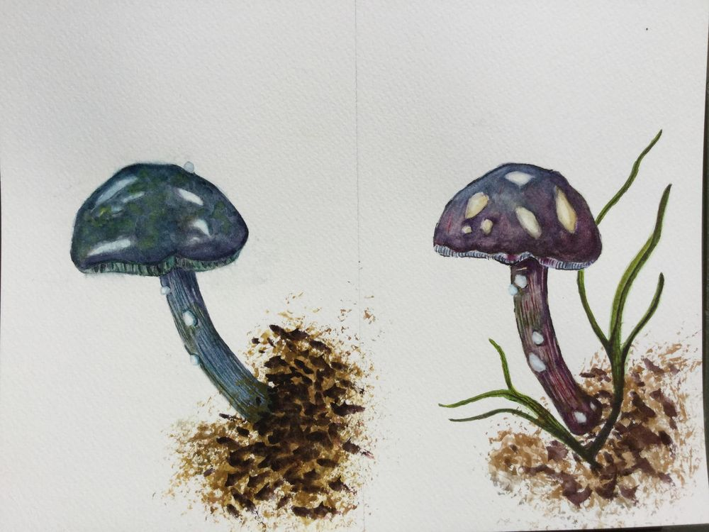 Forest Flora - image 3 - student project