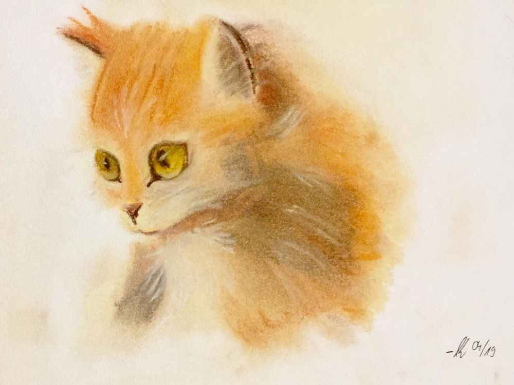 Ginger Kitty - image 1 - student project