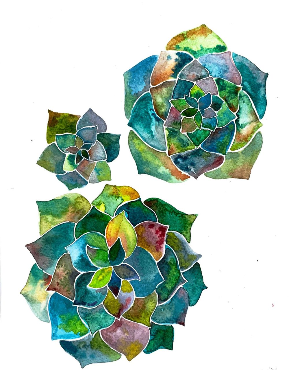 Modern Watercolour Botanicals - image 3 - student project