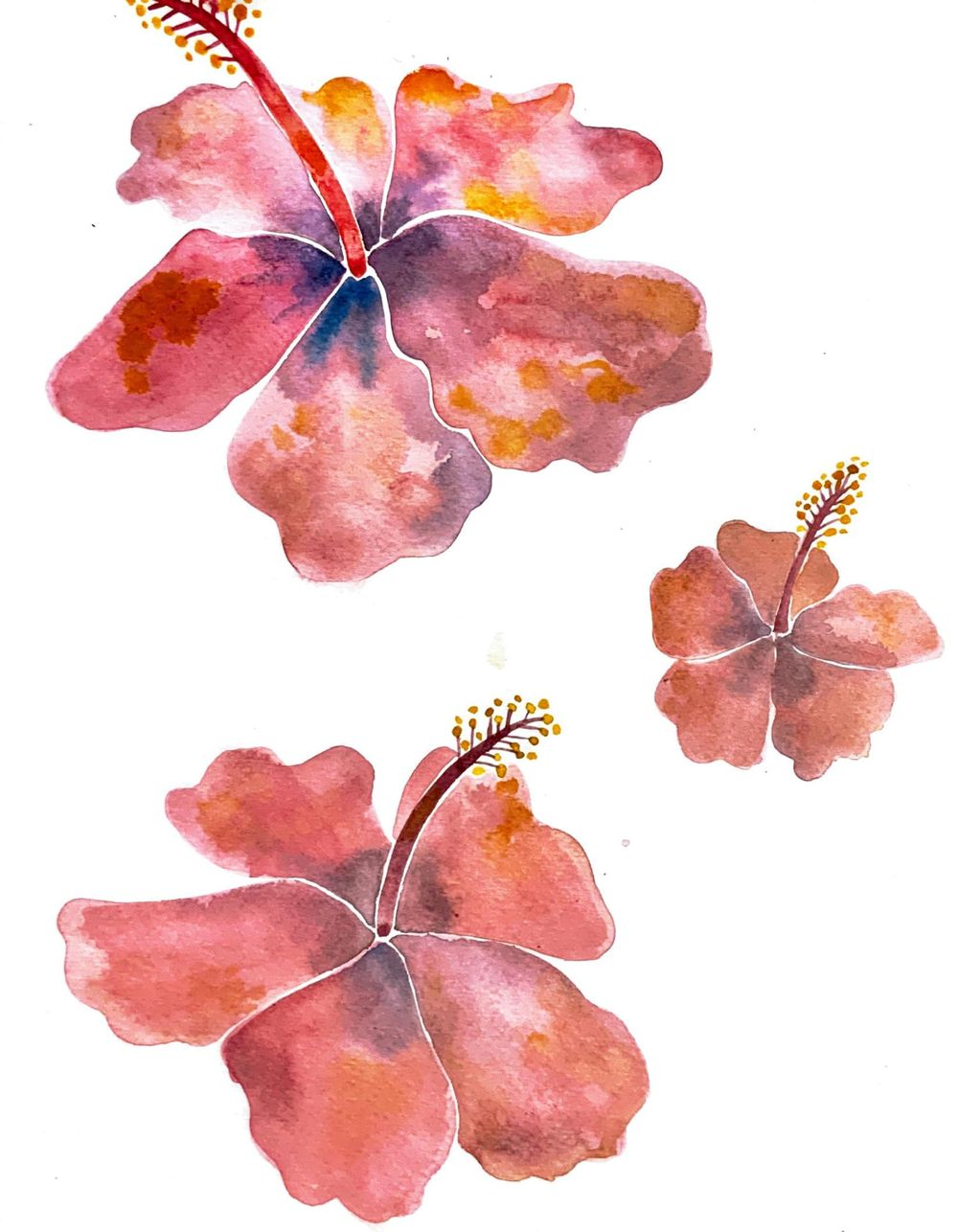 Modern Watercolour Botanicals - image 4 - student project