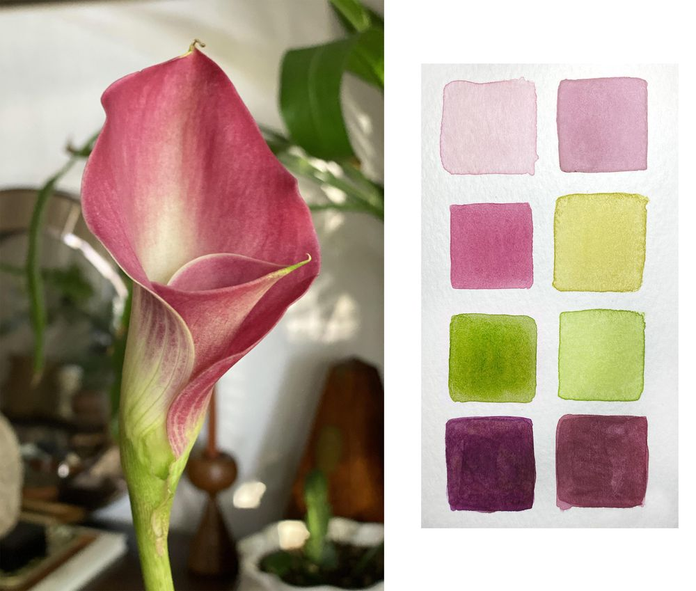 Watercolor Calla Lily - image 1 - student project