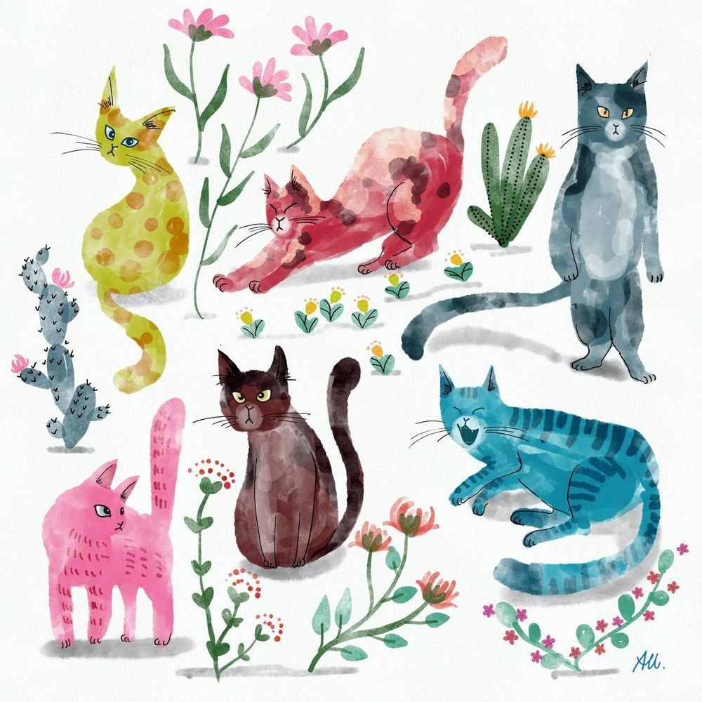 """""""Imperfect"""" flowers and cats - image 2 - student project"""