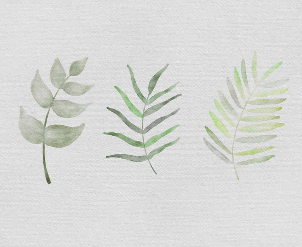 Watercolor Leaves - image 4 - student project