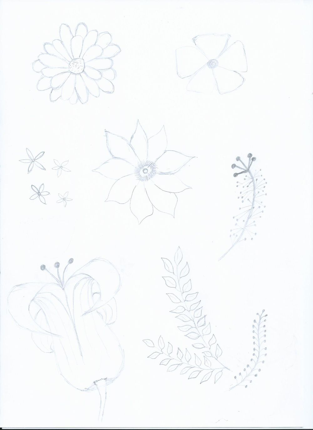 Spring mood - image 2 - student project