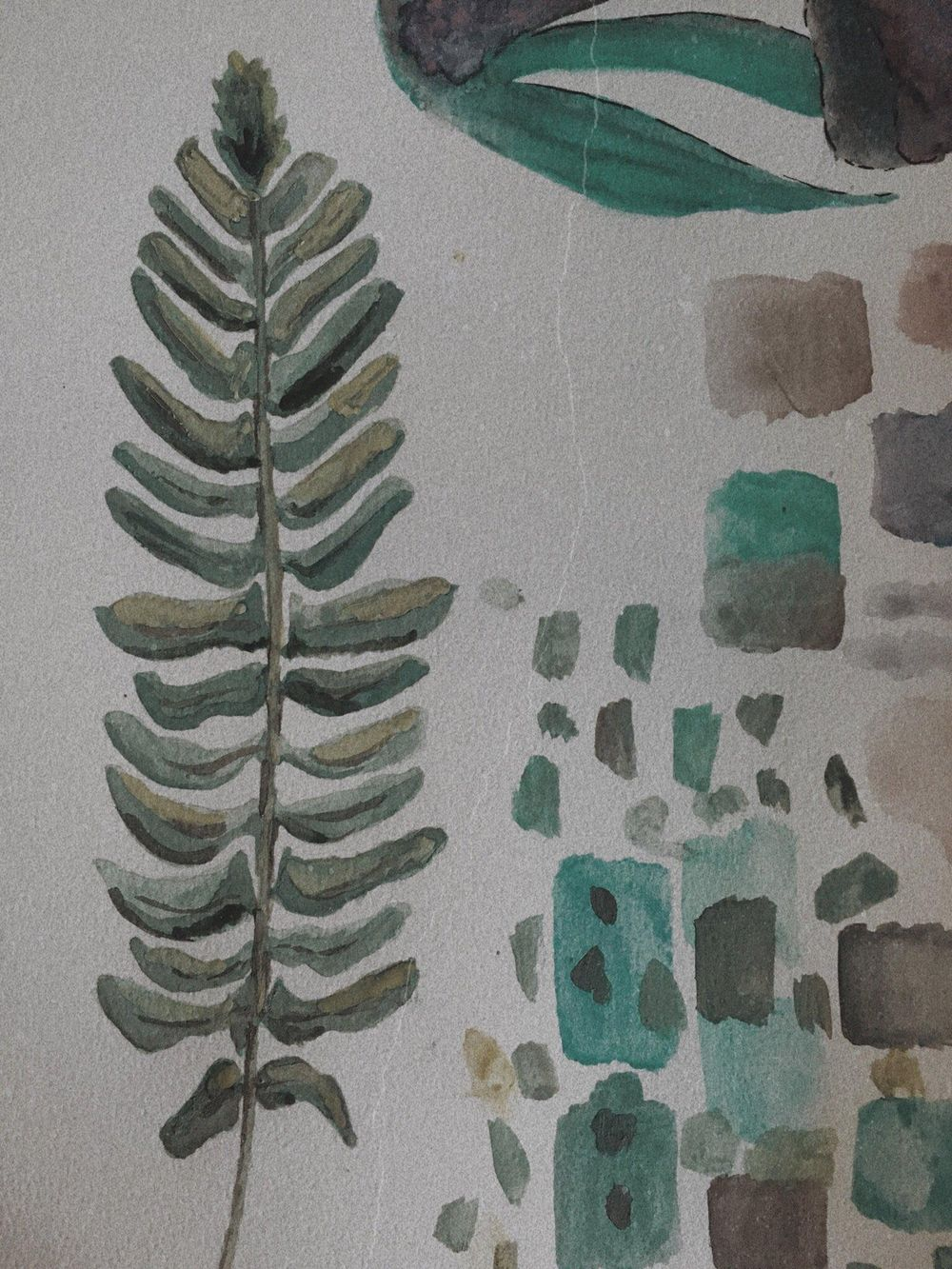 Watercolour in the Woods - image 1 - student project