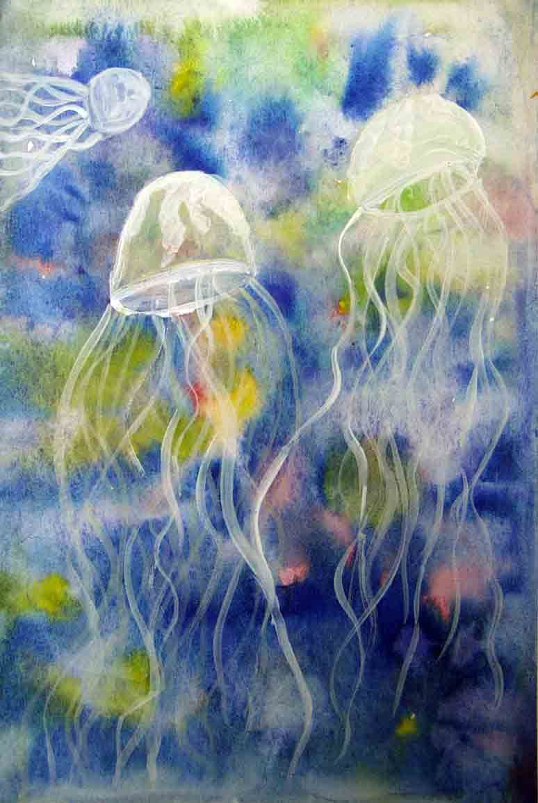 Jelly Fish in Polluted Bay - image 1 - student project