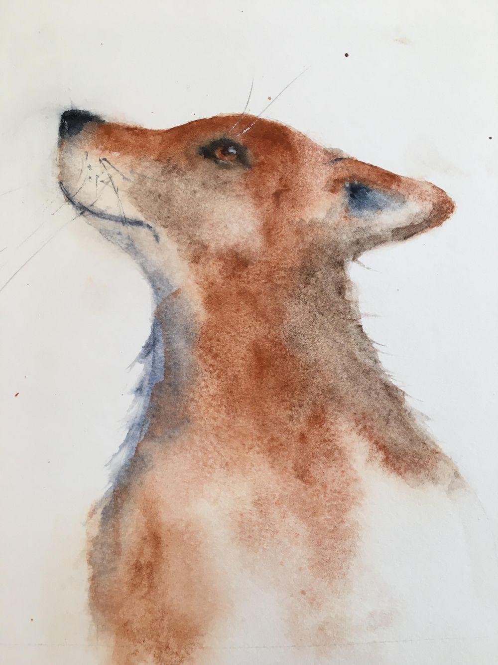 Mr. Fox - image 1 - student project