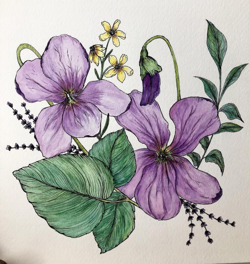 Spring Violets - image 1 - student project