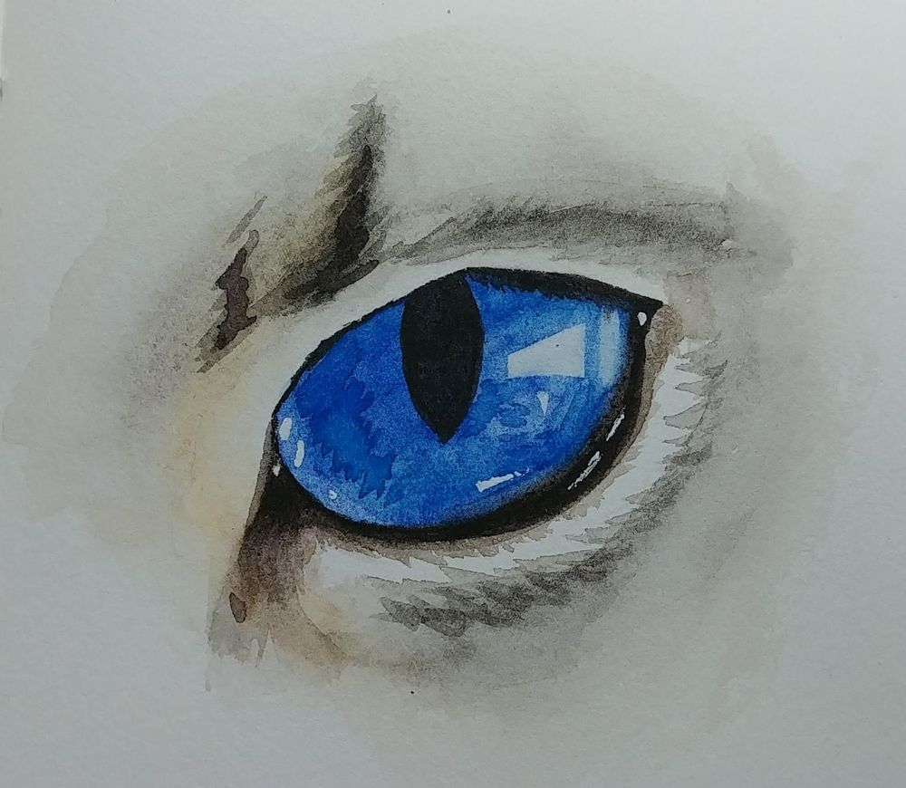Lovely eyes - image 1 - student project