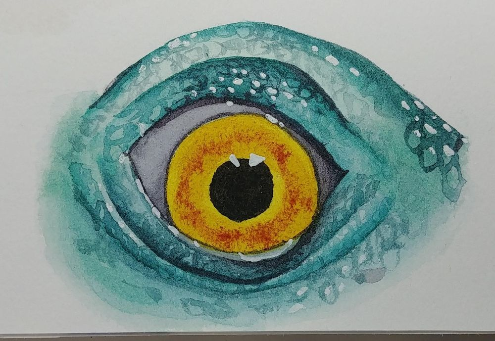 Lovely eyes - image 3 - student project