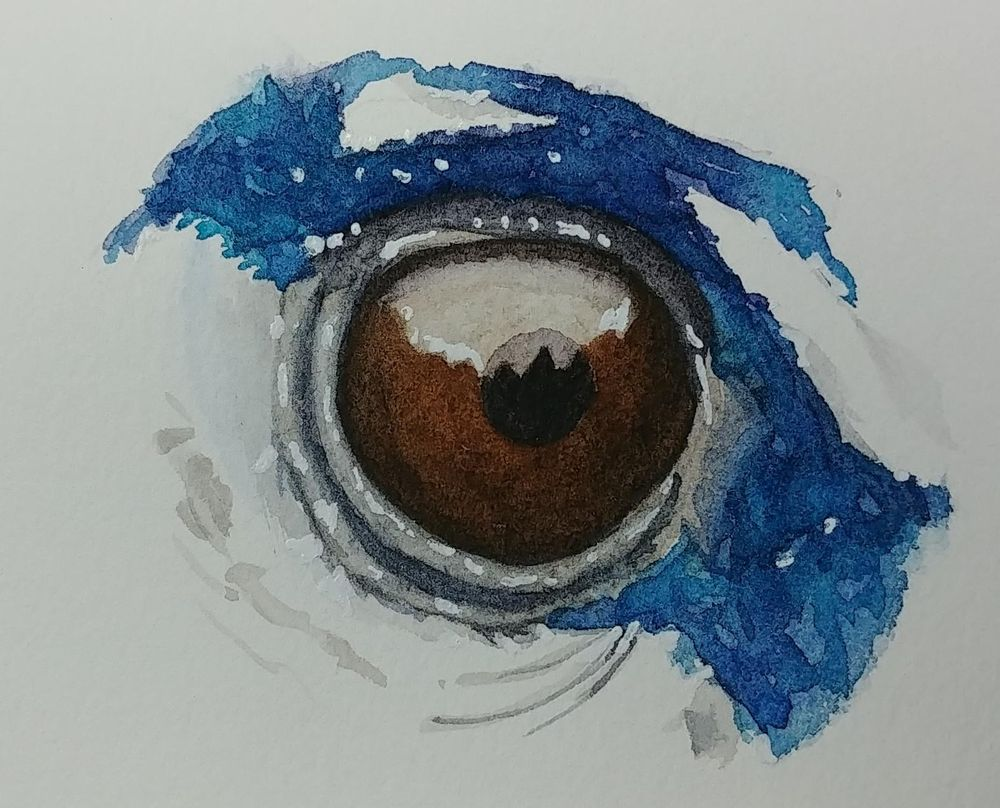 Lovely eyes - image 2 - student project