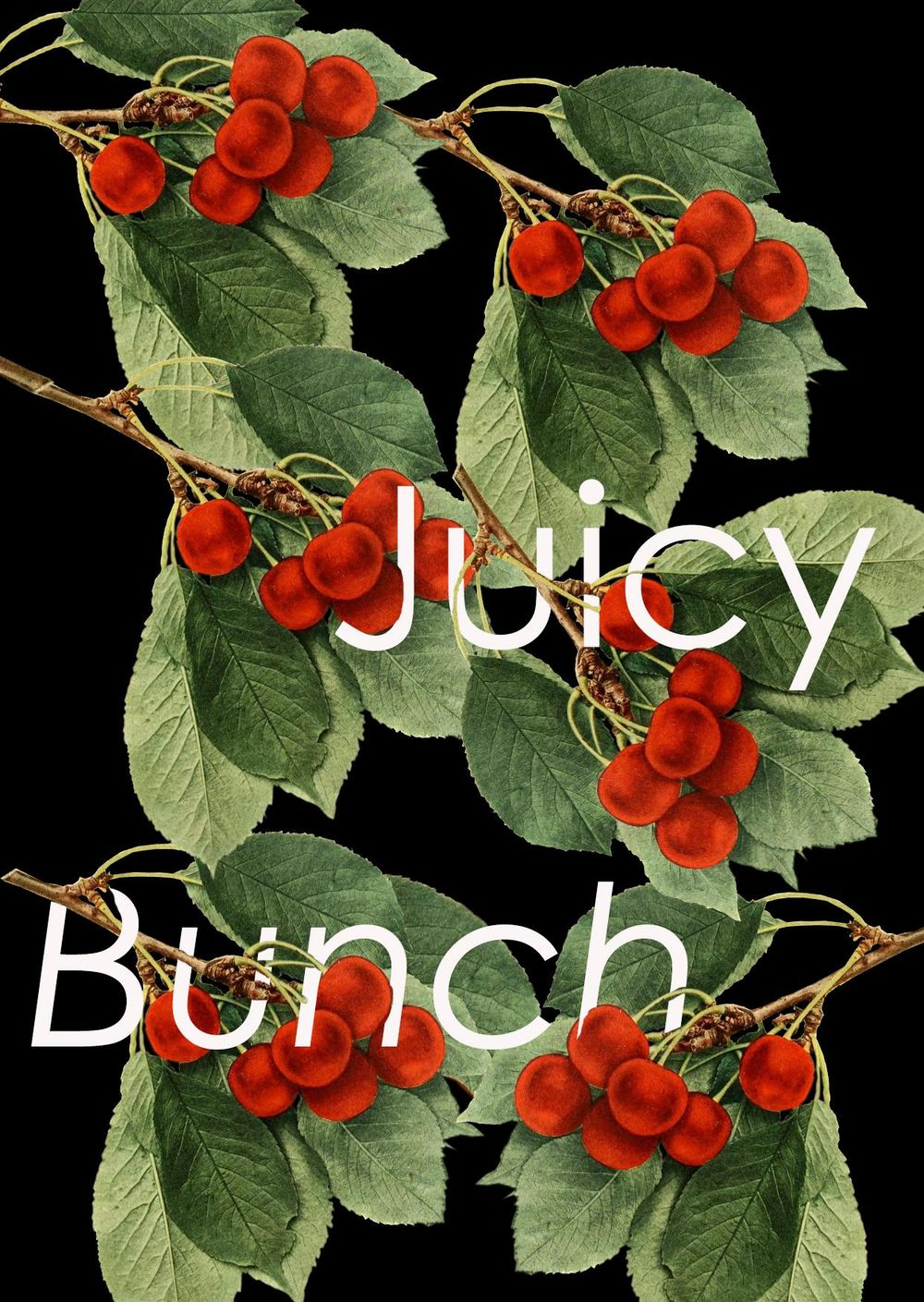 Juicy Bunch - image 1 - student project