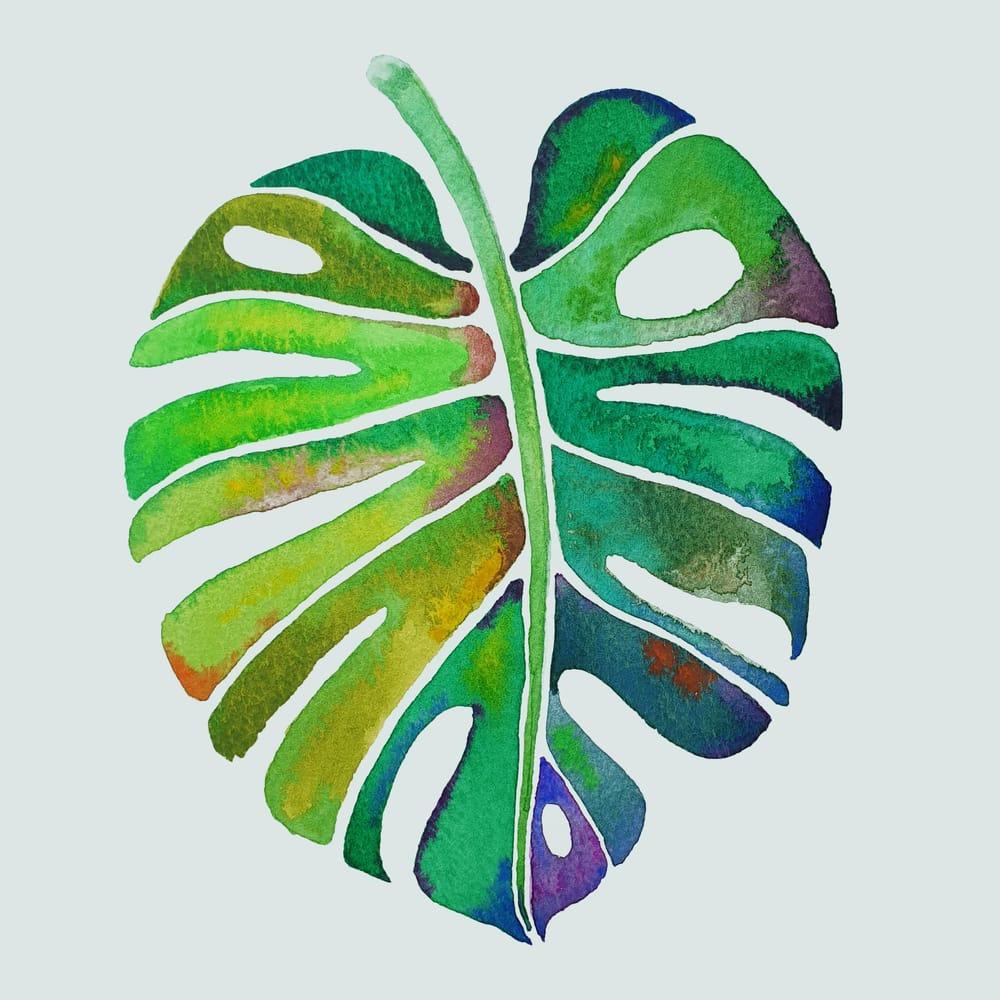 Watercolour Botanicals Practice - image 2 - student project